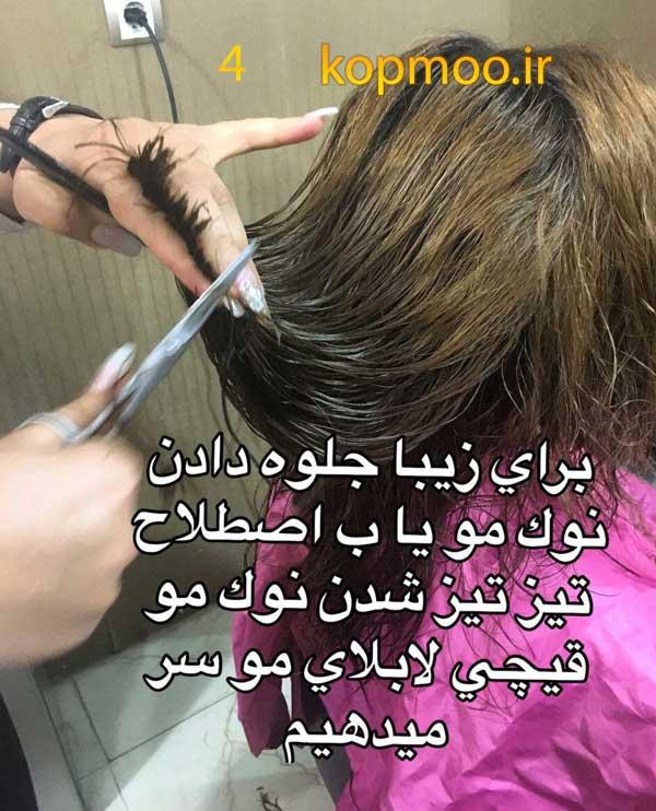 آموزش کوتاهی مو زنانه