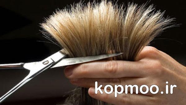 آموزش کوپ مو زنانه